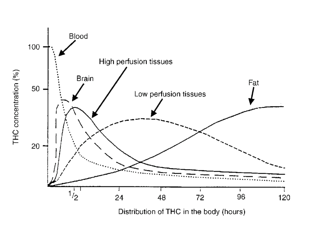 thc distribution in the body over time graph